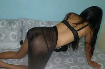 web camsex, weibscams